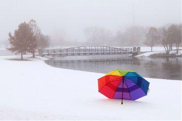 freetoedit winter nature rainbow umbrella
