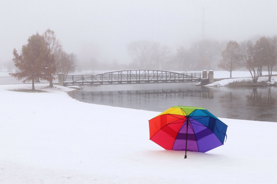 #FreeToEdit Foggy morning in Illinois today.  #winter #nature #rainbow #umbrella #bridge #nature #naturephotography #colorful #snow #cold #photography #bridge #pRk #trees #fog