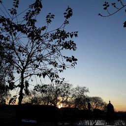 sunset toulouse backlight skyphotography trees freetoedit