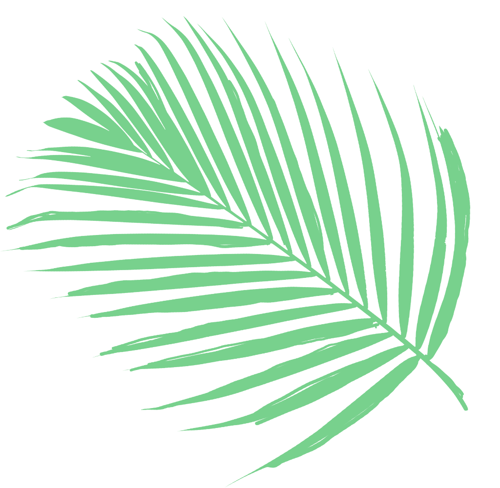 #FreeToEdit #ftestickers #nature #greeny #palm #leaves