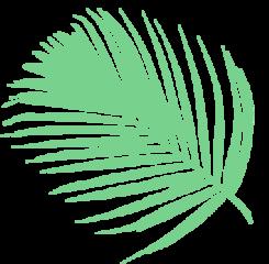 freetoedit ftestickers nature greeny palm