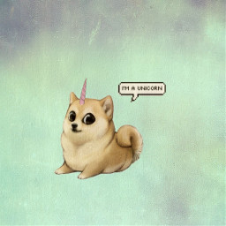 freetoedit unicornstickers#blackandwhite colorsplash doge#cute#kawaii collage
